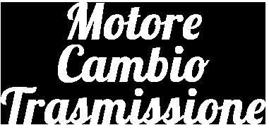 motorecambiotrasm